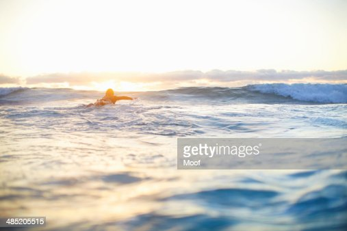 Female surfer swimming out to waves on surfboard, Sydney, Australia : Stock Photo