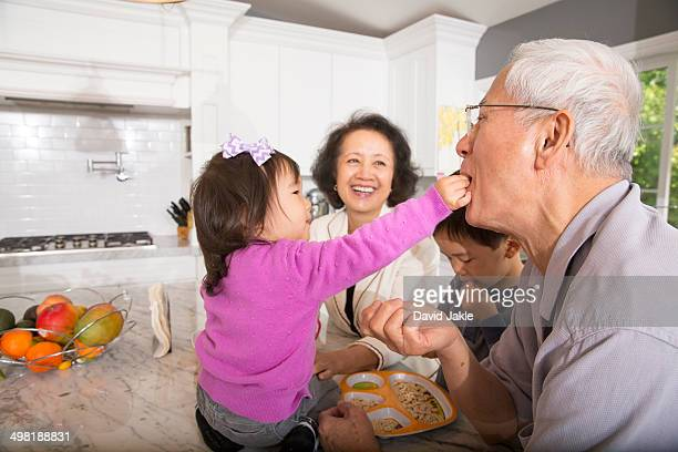 Female toddler feeding snack to grandfather in kitchen