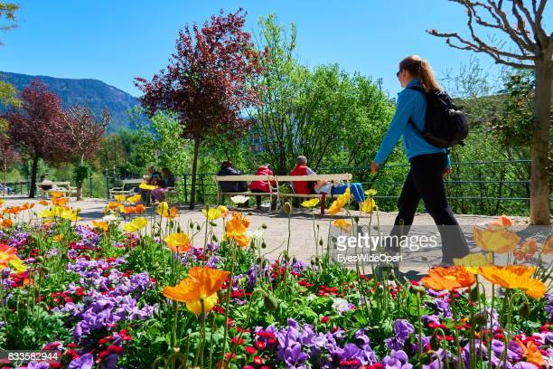 A female tourist is walking next to flowers in the green city centre of Meran in South Tyrol on April 21 2015 in Lana Italy