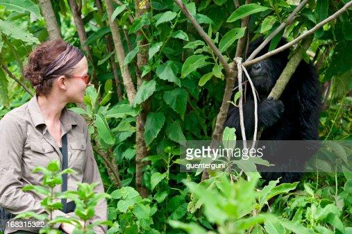 A female tourist observing a juvenile Mountain Gorilla
