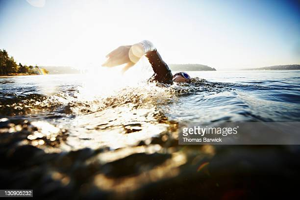 Female triathlete swimming freestyle at sunrise