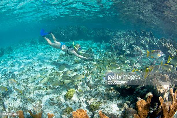 Female underwater