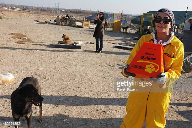 A female volunteer in yellow uniform collects money from visiting animal lovers for Vafa Shelter where homeless dogs are kept and cared for on...
