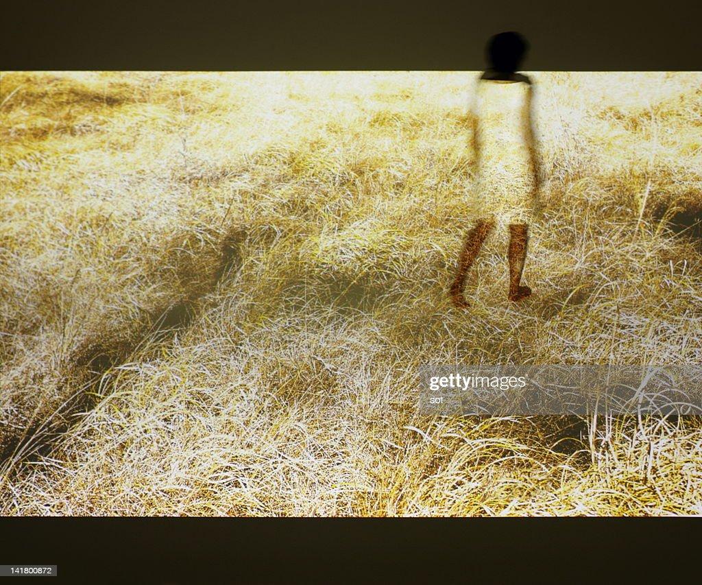 Female walking in grassy plain : Stock Photo