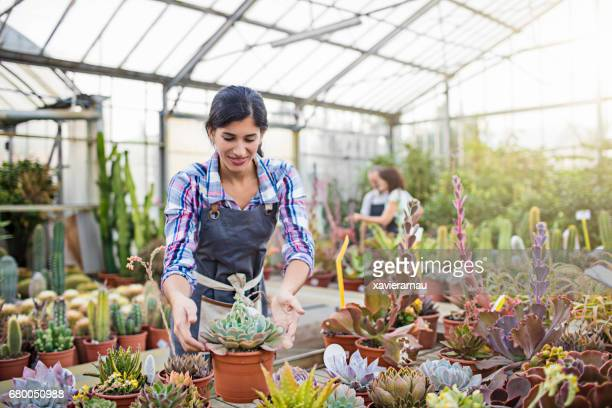 Female worker touching cactus plant in greenhouse