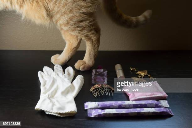Feminine Products and a Cat