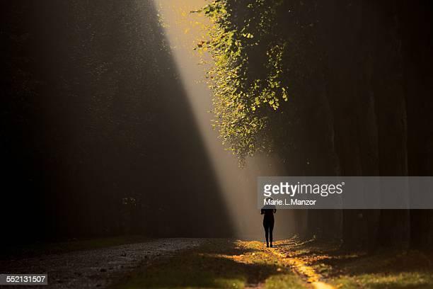 Feminine silhouette in a misty forest