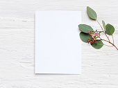 Feminine wedding desktop mock-up with blank paper card and Eucalyptus populus branch on white shabby table background. Empty space. Styled stock photo, web banner, flat lay, top view.
