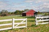 Fence, barn, and barnyard