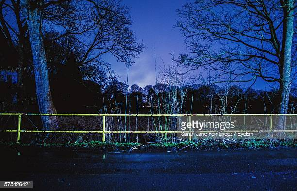 Fence By Road And Trees At Night