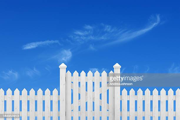 Fence Gate and Sky