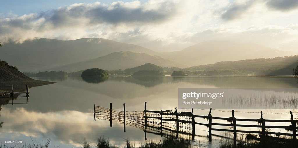 Fence in still lake in rural landscape : Stock Photo