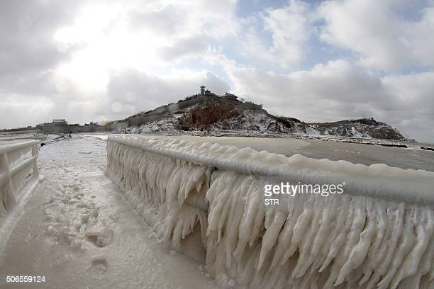 A fence is covered with ice by the seaside in Penglai in eastern China's Shandong province on January 24 2016 Much of China shivered on January 23 as...