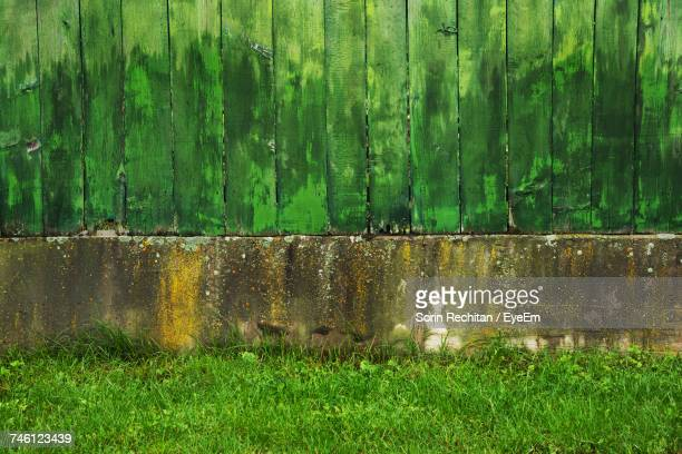 Fence On Old Wall By Grassy Field