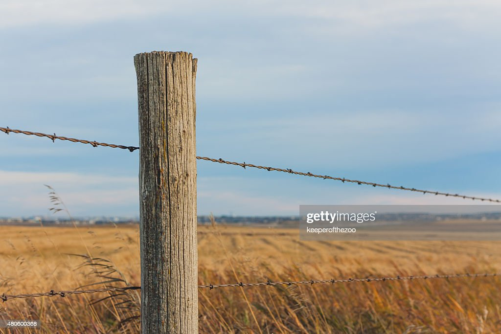 Fence Post in the Prairie : Stock Photo