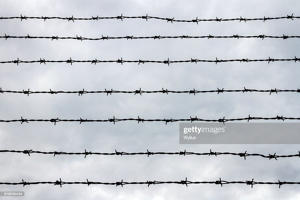 Fence with barbed wire : Stock Photo