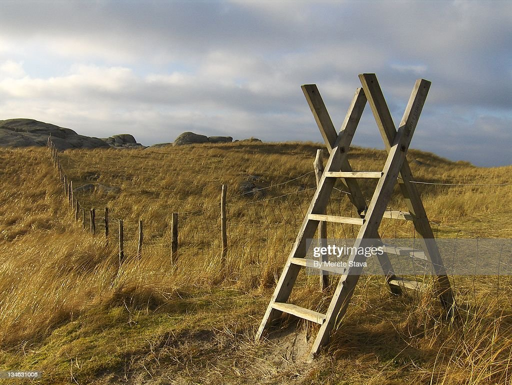 Fence with ladder stile : Stock Photo