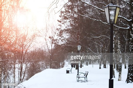 fence with the sun peaks : Stock Photo