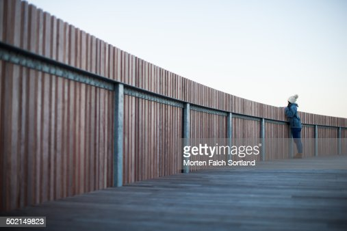 Fenced In : Stock Photo