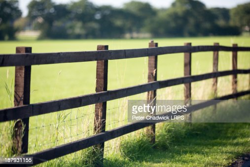 Fenceline : Stock Photo