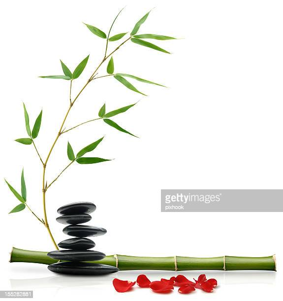 Feuille de bambou photos et images de collection getty images - Astuces feng shui amour ...