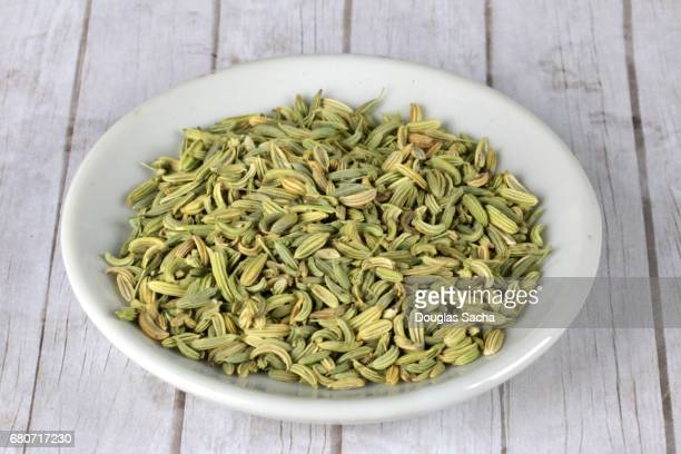 Fennel Plant Seeds in a dish (Foeniculum vulgare)