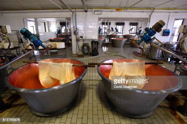 Fermented curd hangs in muslin cloths to allow the excess whey to drip off as workers make ParmigianoReggiano cheese in the traditional method at...