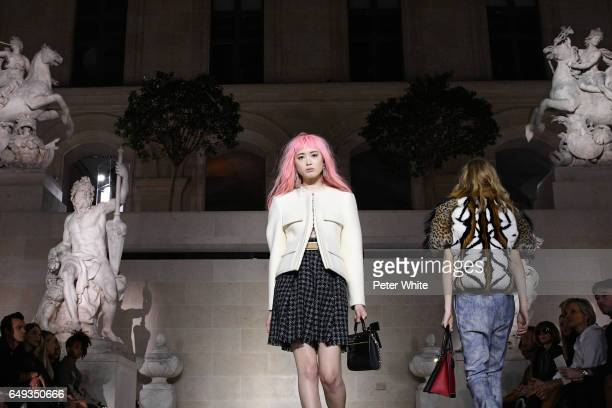 Fernanda Hin Lin Ly general view walks the runway during the Louis Vuitton show as part of the Paris Fashion Week Womenswear Fall/Winter 2017/2018 on...