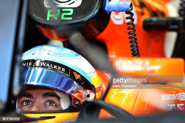 Fernando Alonso of Spain and McLaren Honda prepares to drive during final practice for the Formula One Grand Prix of Hungary at Hungaroring on July...