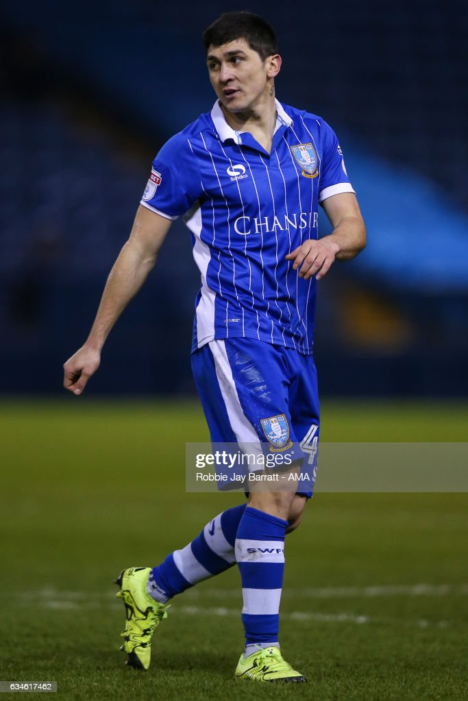 Fernando Forestieri of Sheffield Wednesday during the Sky Bet Championship match between Sheffield Wednesday and Birmingham City at Hillsborough on February 10, 2017 in Sheffield, England.