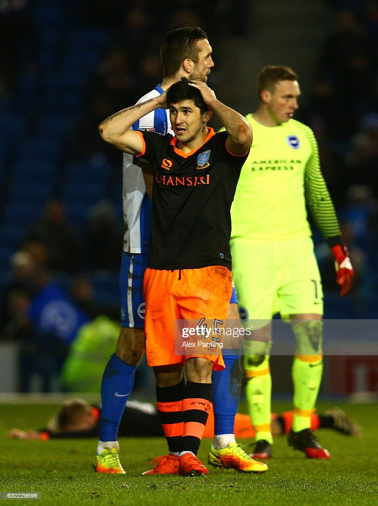 Brighton & Hove Albion v Sheffield Wednesday - Sky Bet Championship