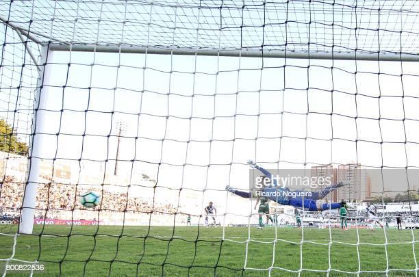 Fernando Prass of Palmeiras in action during the match between Ponte Preta and Palmeiras as a part of Campeonato Brasileiro 2017 at Moises Lucarelli...