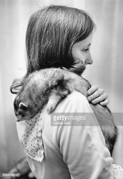 MAR 12 1978 MAR 14 1978 MAR 15 1978 ferret over her shoulder kids pet Tabu Credit Denver Post Inc