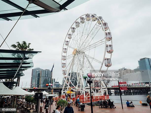 Ferris Wheels At Darling Harbour, Sydney CBD, NSW, Australia