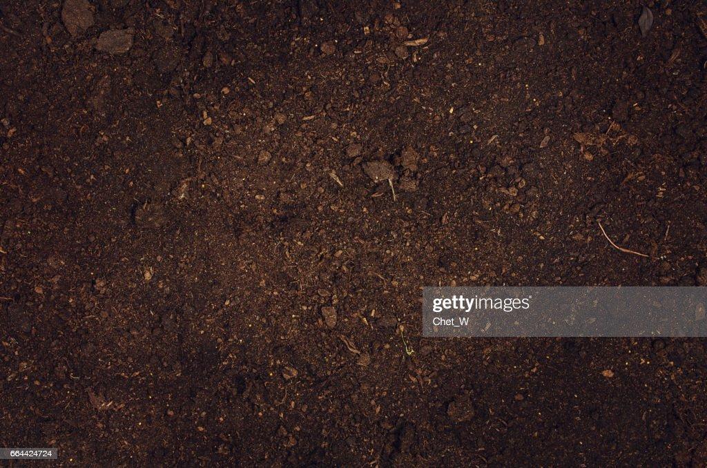 Fertile Garden Soil Texture Background Top View : Stock Photo