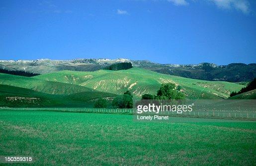 Fertile rural landscape near christchurch stock photo for Landscaping chch