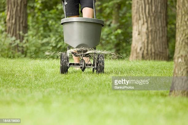 Engrais Spreader avec pastilles Asperger sur de l'herbe