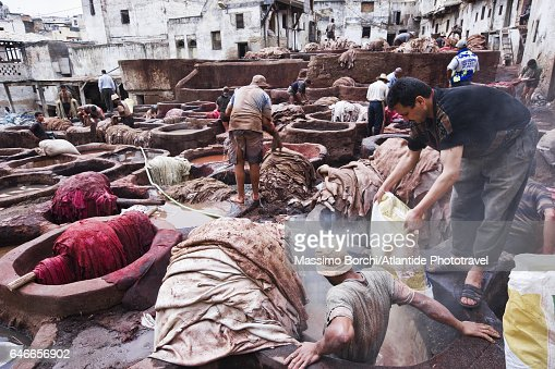 Fes el Bali (Old Fes), Medina, working at Chouwara Tannery : Stock Photo