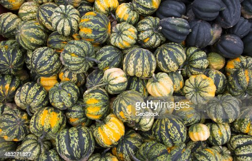 Festival And Winter Squash Stock Photo | Getty Images