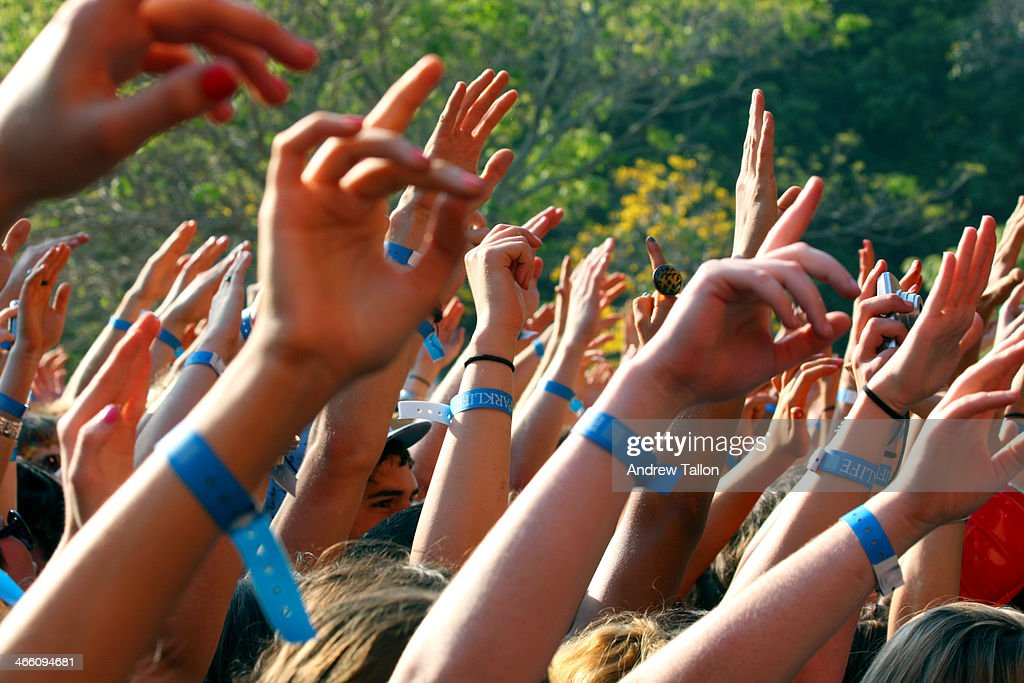 Festival Crowd Hands