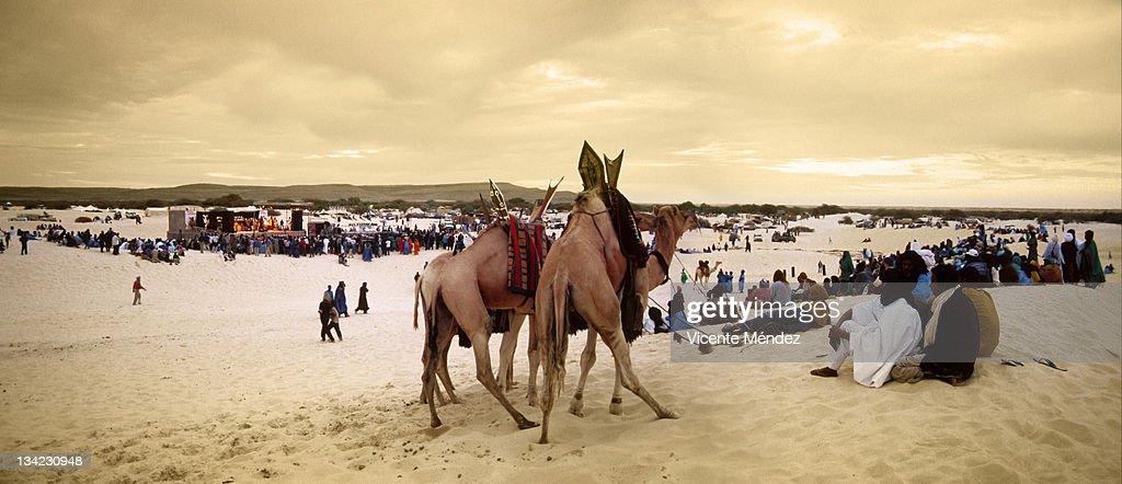 Festival in Desert : Stock Photo