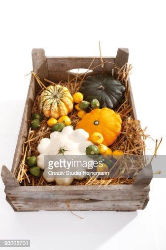 Festival-pumpkin (cucurbita pepo) and pattypan squash in wooden box, close-up, elevated view : Stock Photo