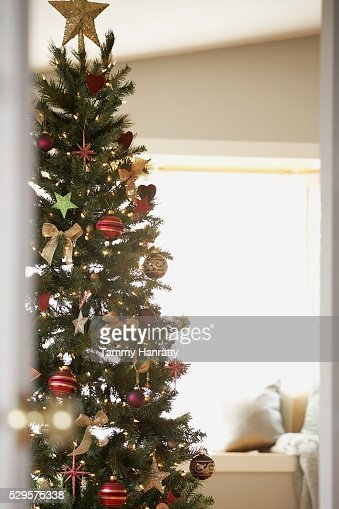 Festive Christmas Tree : Stock Photo