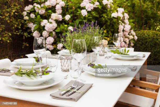 Festive laid table in the garden
