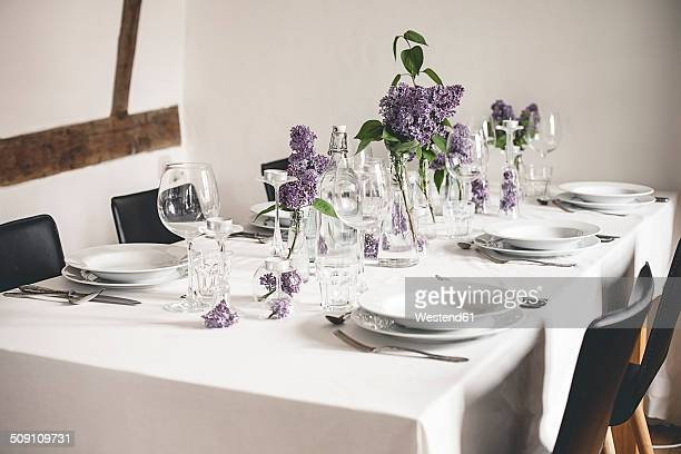 Festive laid table with lilac, Syringa