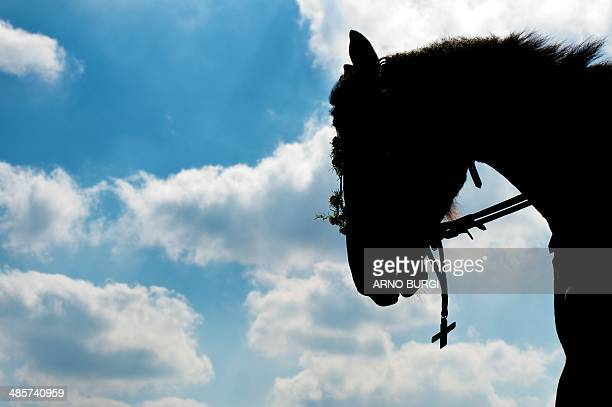 A festively decorated horse silhouettes against the sky during a traditional Sorbian Easter procession in Ralbitz eastern Germany on Easter Sunday...