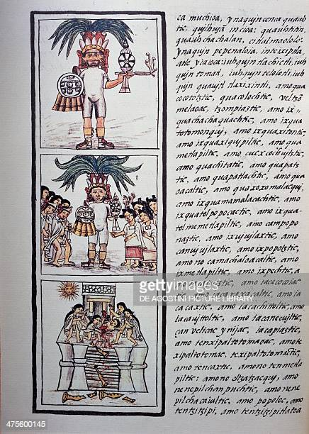 Festivities and celebrations Festival of Toxcatl and his victim page from Book II of the Florentine Codex bilingual version in Spanish and Nahuatl...