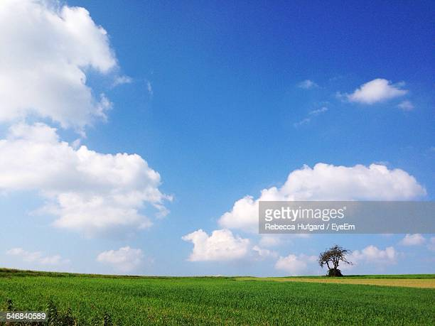 Field Against Cloudy Sky