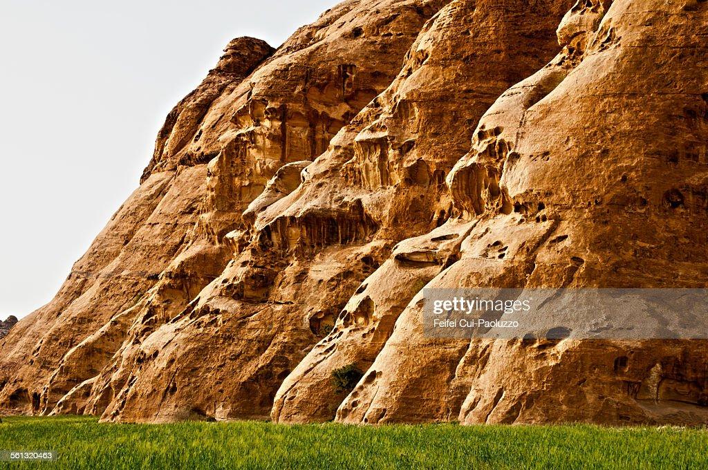 Field and Rock of Petra Jordan