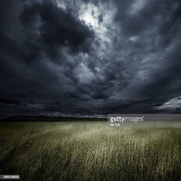 Field at storm